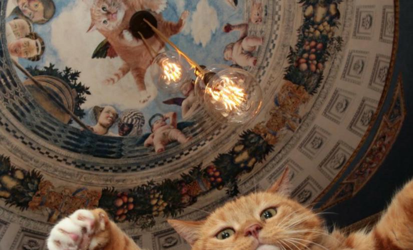 fat cat art header