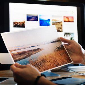 graphic designer jobs with art degree