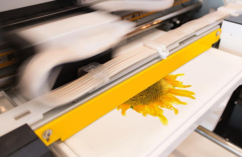 dye sublimation fabric print